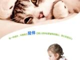 今天下单包邮 猫咪活体宠物 异国短毛猫波斯猫加菲猫