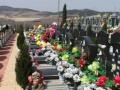 绵阳丧葬服务一条龙 专业提供公墓 丧葬用品、服务