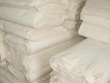 东莞供应10安有机棉布 厂家现货直销