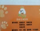 新汶派特宠物医院开业了