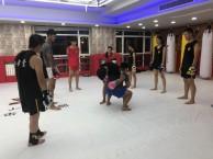 拳击培训 成人少儿防身散打培训 十一活动进店赠拳套