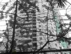青年路宝善街南屏街 华尔贝大厦 合适的价格合适的房