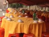万里餐饮服务中心经营厨师服务员,台凳,餐具,帐篷等出租