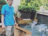 上门清洗维修保养鱼缸鱼池海鲜池,鱼缸安装漏水补胶