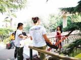 南阳摄影培训 学习摄影的方法有些 郑州摄影培训班