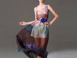 2015新款欧美外贸大码女装 水墨印花波西米亚沙滩真丝长裙 02