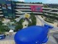 海洋球 大蓝鲸鱼岛乐园-活动道具租赁