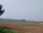 陈曹乡双楼张村新元路以北 土地 300亩平米