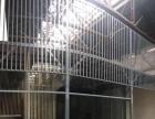 穿金路 厂房二层 200平米 简装 工作室