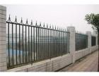 天津铁艺围栏 铁艺围栏价格 铁艺围栏厂家