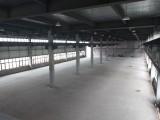 标准化厂房独栋 16米层高 面积可定制 现房销售无中介费