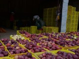 四方达水果批发特价水果苹果甘肃天水特级花牛苹果10斤装包邮