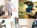 室内空气除甲醛治理 清馨态生物酶 招商代理加盟