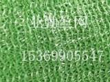 大量现货供应绿色盖土网 遮阳网 工地防尘网 绿化网 价格优惠