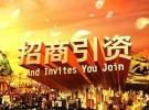 天津市武清区政府招商(返税)免费提供地址0元办理执照代理记账