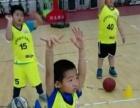 2016孫明明籃球冬令營