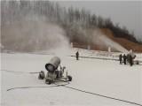 小型人工造雪機室內外可用 快速高效炮式造雪機