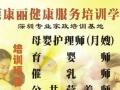 深圳宝葆康丽月嫂育婴师催乳师培训学校火爆招生中、、