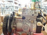 福田4DA1-1发动机增压泵VE4/11E1800L025