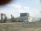 依安 年北公路267公里现代化砖 136800平米