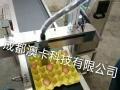 批发鸡蛋喷码机,食品喷码机,饮料喷码机,茶叶喷码机