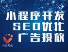 专业高效诚信 小程序开发 SEO优化 网络舆情监测