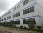 凤岗镇中心靠近深圳周边出租带装修厂房楼上1300平
