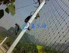 山体护坡网生产厂家哪家好 鑫乐源