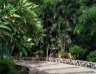 海甸岛五中路五福雅苑蓝岛康城海语花园怡心园2房拎包入住交通方