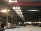 滨海工业区标准厂房出租 有排污指标 可分割出租