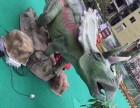 2017多维恐龙展租赁出售