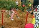 深圳植树场地/春游踏青植树流程,专接待团队植树户外活动!