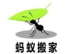 个人面包车出租搬家搬运津滨同城物流拉运租车电话约车