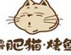 肥猫烤鱼加盟