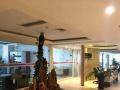 CBD外环会展写字楼格拉姆大厦830平1.5元出租
