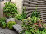杭州上城綠植租賃花卉銷售苗木批發綠化施工