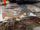 茂名信宜水陆两用挖机租赁公司