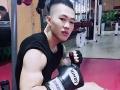 佐龙泰拳,教学科目,纯泰拳,自由搏击