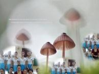 上海舞蹈艺考、影视表演艺考班、播音主持艺考培训班