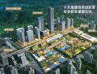 深圳北站 商务中心区公寓 39平复试精装2房 总价200万