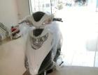 摩托车 踏板车 女士车
