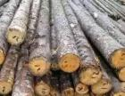 回收工地上废旧木方,圆木