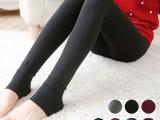 韩国时尚加绒加厚打底裤新款韩版冬季打底裤女式珍珠绒一体裤