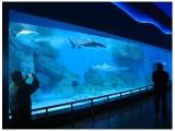 广州大型海鲜池安装设计费用 广州海鲜池制作价格