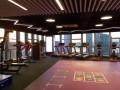 跑步机 运动塑胶地板等体育用品