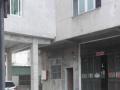 赠送院子 新度卫生院附近1-5层2000多平厂房办