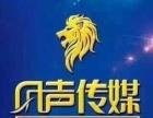 十三年专注网络企业网站建设、中英文域名抢注、空间