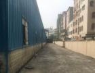 独门独院钢结构厂房,滴水10米,可装行车