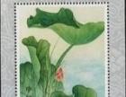 T54荷花邮票小型张(全品相)