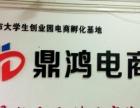 淘宝天猫金牌服务商烟台鼎鸿